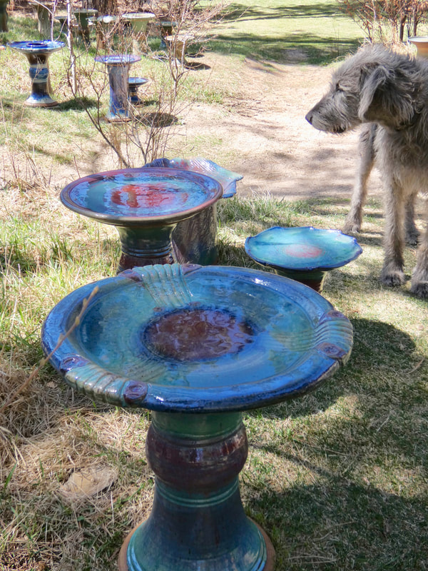 Spokeshound Nimbus inspects assorted bird baths in Shinza